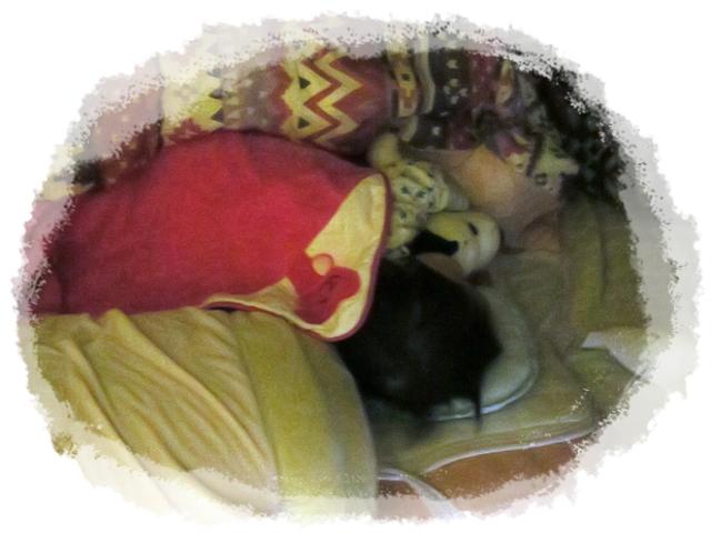 スヌーピーのぬいぐるみを羽交い絞め、いや抱きついて寝る我が子