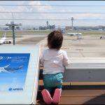 朝練と羽田空港