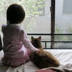 ネコとの距離感