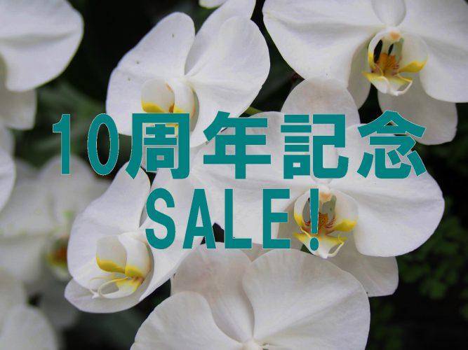 10周年記念SALE開催!