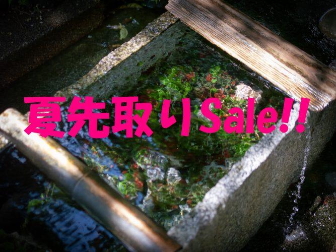 夏先取りSale第1弾(完成車/フレーム編)!